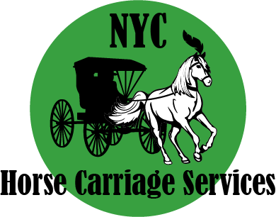 NYC Horse Carriage Service