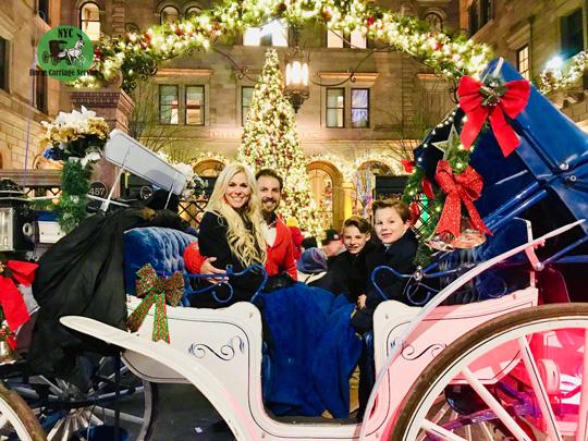 Christmas lights carriage ride🎄🗽🐴🎩
